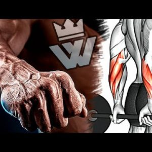 Bigger Forearms With Only 9 Exercises!