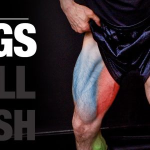 The PERFECT Legs Workout (PUSH | PULL | LEGS)