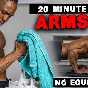 20 MINUTE ARMS WORKOUT (NO EQUIPMENT) | BICEPS, TRICEPS, & SHOULDERS | FOR BEGINNERS ALSO!