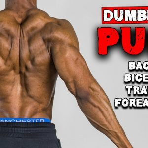 DUMBBELL PULL HOME WORKOUT FOR MUSCLE GAIN | BENCH OR NO BENCH (FULL WORKOUT)