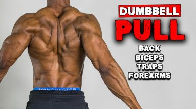 DUMBBELL PULL HOME WORKOUT FOR MUSCLE GAIN   BENCH OR NO BENCH (FULL WORKOUT)