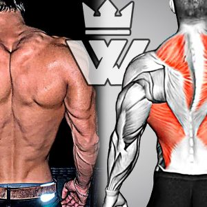 How To Build Your BACK Fast (10 Exercises for Massive Back)