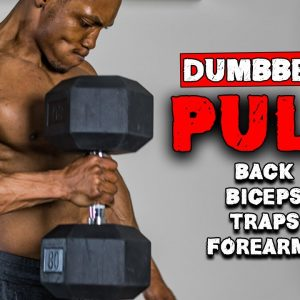 DUMBBELL PULL WORKOUT FOR BUILDING MUSCLE MASS | BENCH OR NO BENCH (FULL WORKOUT)