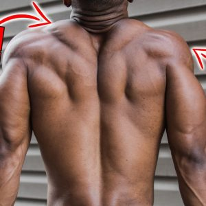 SHOULDER AND TRAP EXERCISES FOR BUILDING MUSCLE