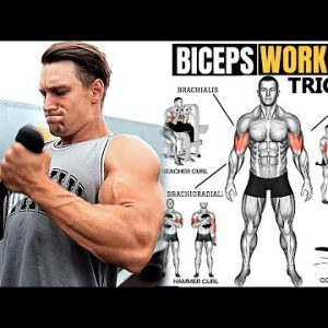 THE BICEPS & TRICEPS WORKOUT