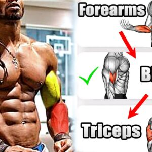 How To Build Your Biceps Triceps Forearms Workouts