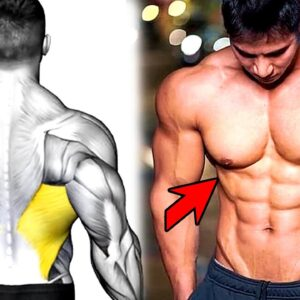 6 Exercises To Build A Big Back - Gym Body Workout