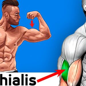 How To Build Your Biceps Fast 7 Exercises