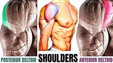 Shoulder Exercises To Add Serious Size To Your Shoulders