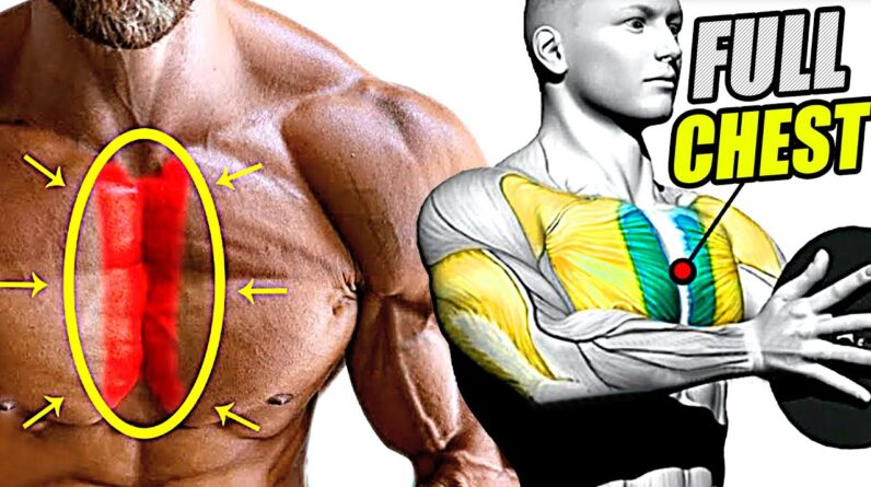 How to Build a Bigger CHEST Fast 10 Exercises!