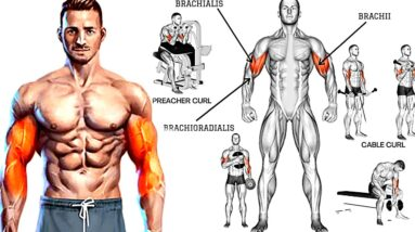 10 Fastest Big Biceps Exercises For Even More Of A Pump