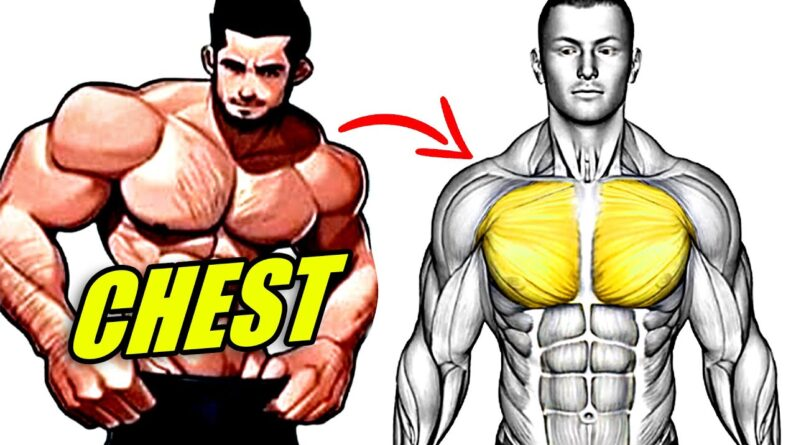 Fast Effective Bodyweight Chest Workout (Push Ups Only)